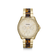 Fossil-fam4499